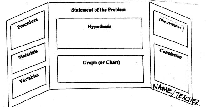 science fair project steps template